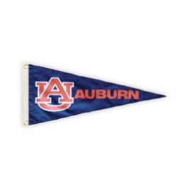 Products / Pennants image